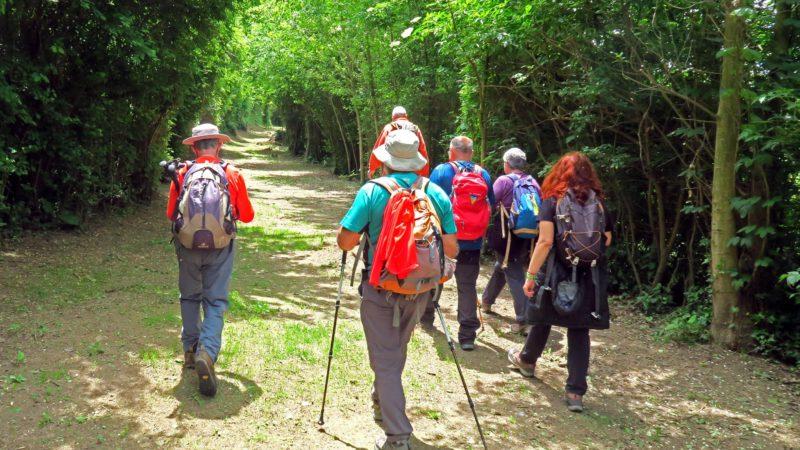 Entre setmana-Ruta del Ter Sant Quirze de Besora-Torelló 19/05/2021